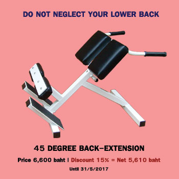 45 degree back extension banner special prices